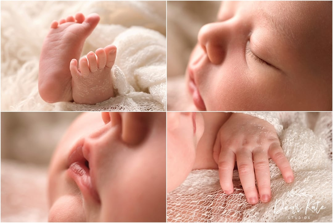 loveland newborn photographer macro detail pictures