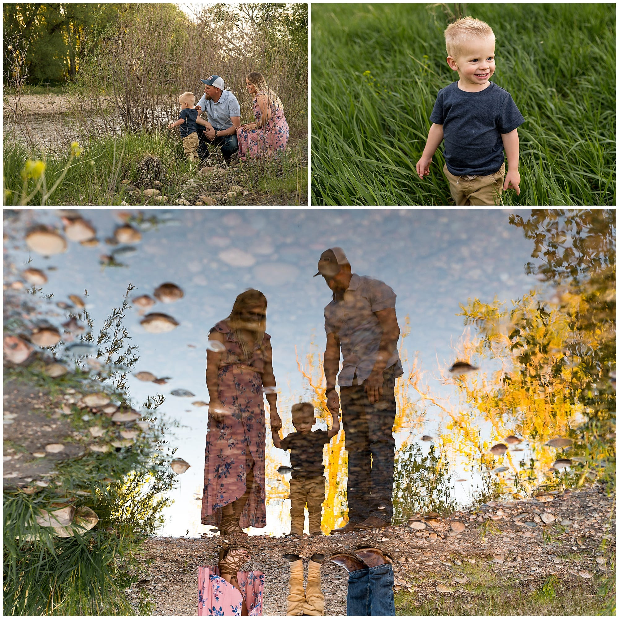 Pilkington family portrait session, fort collins field at sunset