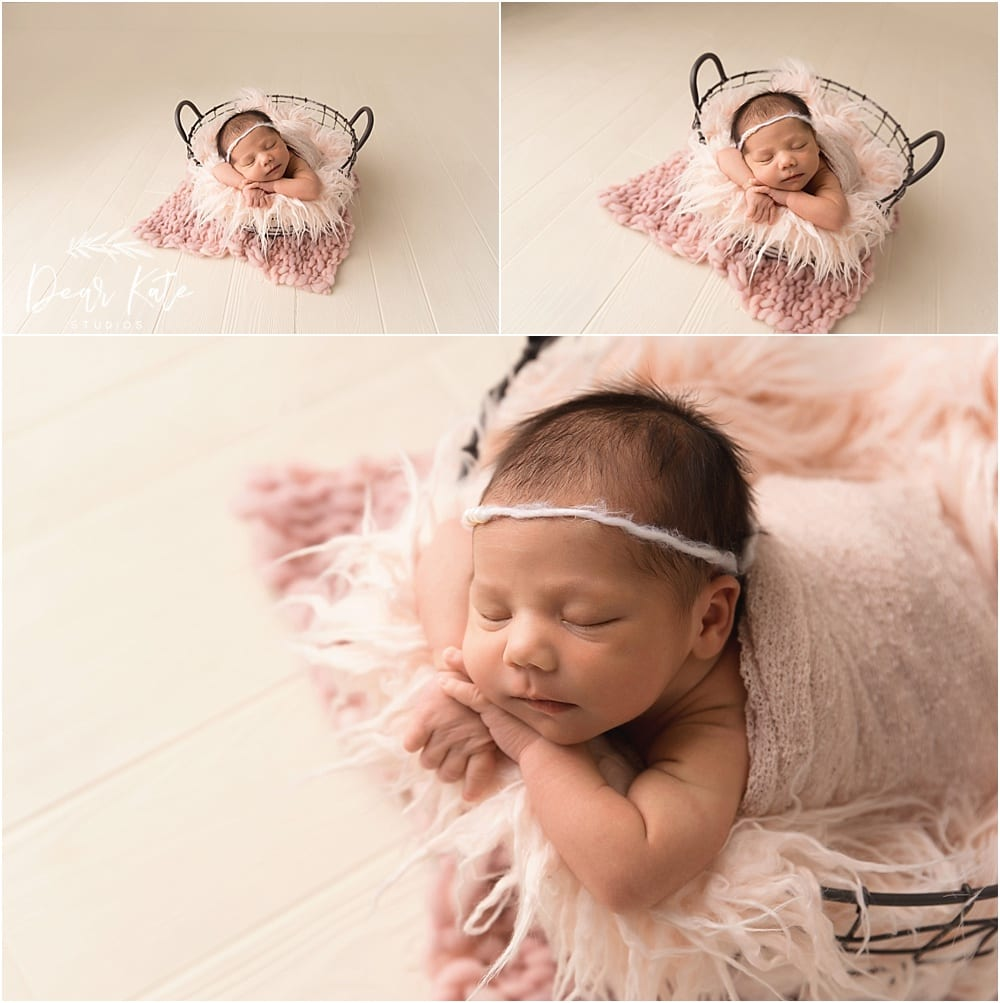 evans, CO newborn photographer